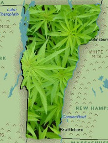 Vermont Medical Marijuana Laws