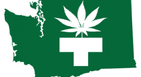 Washington Medical Marijuana Laws