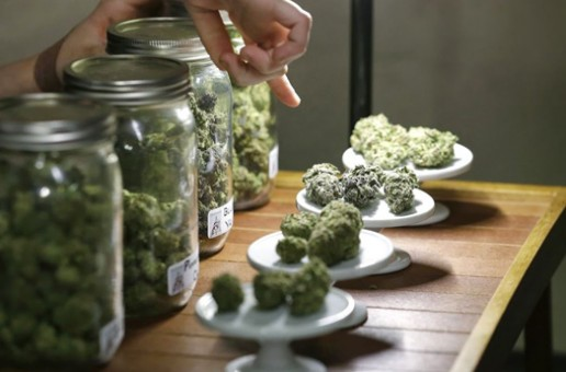 Colorado Dispensaries Sell Over $20 Million In Recreational Marijuana