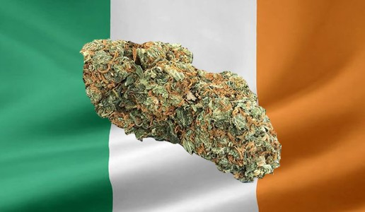 Ireland Likely To Decriminalize Marijuana