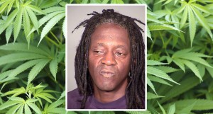 Flavor Flav Arrested For Marijuana Possession in Las Vegas