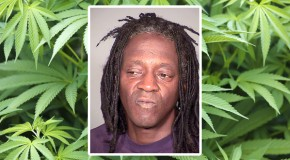 Flavor Flav Arrested For Marijuana Possession in Las Vegas