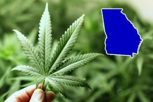 Georgia Unveils Medical Marijuana Registry