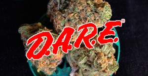 D.A.R.E. Accidentally Publishes Pro-Marijuana Legalization Post
