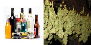 Which is Worse, Alcohol or Pot? A Doctor Chimes In