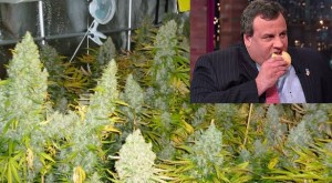 Chris Christie Would Shut Down Marijuana In Legal States
