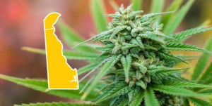Delaware House Decriminalizes Marijuana Possession