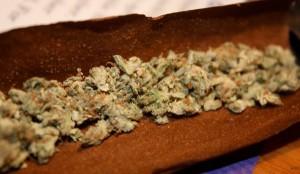 "Morgan Freeman Calls for Marijuana Legalization ""Across the Board"""