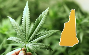 New Hampshire Approves Medical Marijuana Treatment Centers