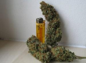 New Synthetic Marijuana Has Many Worried