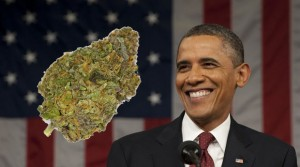 Obama Administration Clears The Way For Marijuana Research