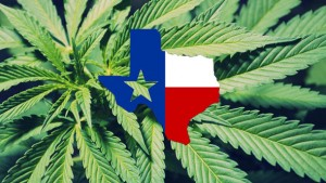 Texas Medical Marijuana Bill Heads to Governor Abbott