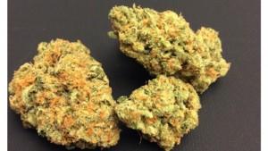 Florida House Passes Medical Marijuana Bill That Bans Smoking Weed