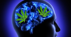 5 Incredible Reasons Your Brain Loves Marijuana More Than You