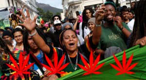 South African Court OKs Marijuana for Home Use