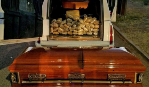 US Border-Patrol Agents Bust 67 Pounds Of Marijuana In Coffin