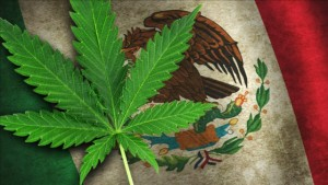 Mexico's Legislature Overwhelmingly Approves Medical Marijuana Bill