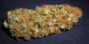 PA House To Vote On Medical Marijuana Bill